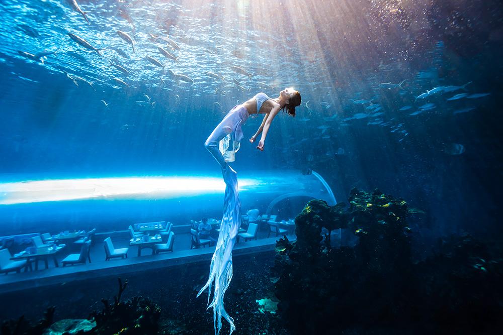 三亚海洋馆水下拍摄